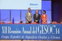Reunión anual GESOC