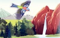 Ilustración selva, catarata y pájaro