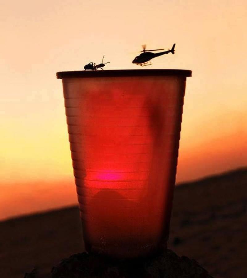Ilusión óptica helicóptero y hormiga en vaso