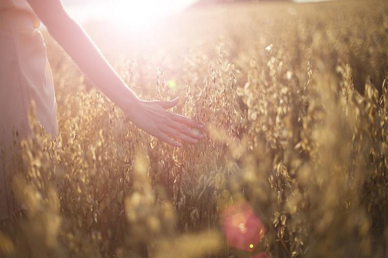 Detalle mujer paseando por campo de cereales