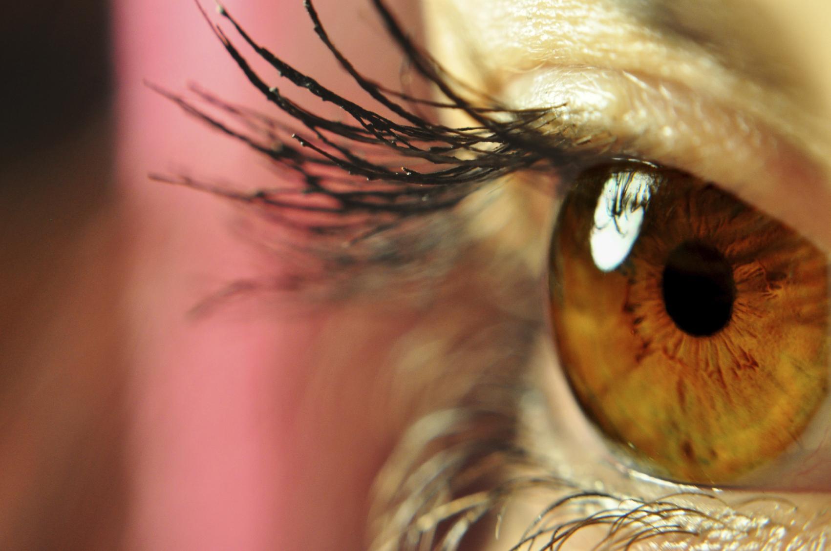 Primer plano de ojo marrón abierto