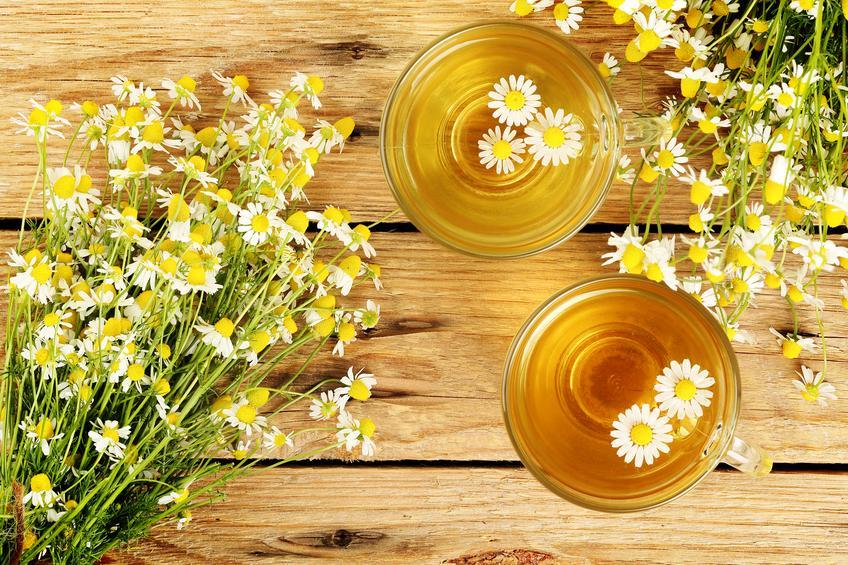 Dos tazas de manzanilla para los ojos y plantas