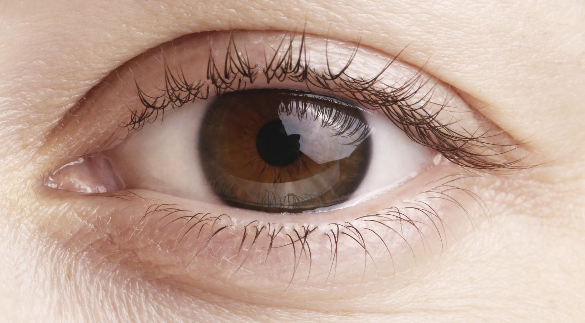 Primer plano ojo marrón con reflejo