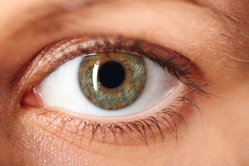Primer plano ojo verde