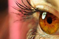 Primer plano ojo marrón con pestañas maquilladas, drusas papilares