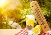Limones, limonada y termómetro