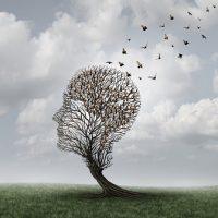 Ilusión óptica pájaros formando cabeza en árbol