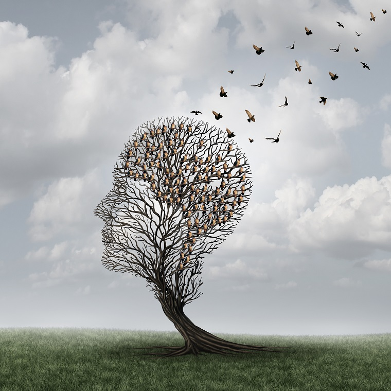 Ilusión óptica de pájaros formando una cabeza