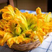 Beneficios de la flor de calabaza para la vista