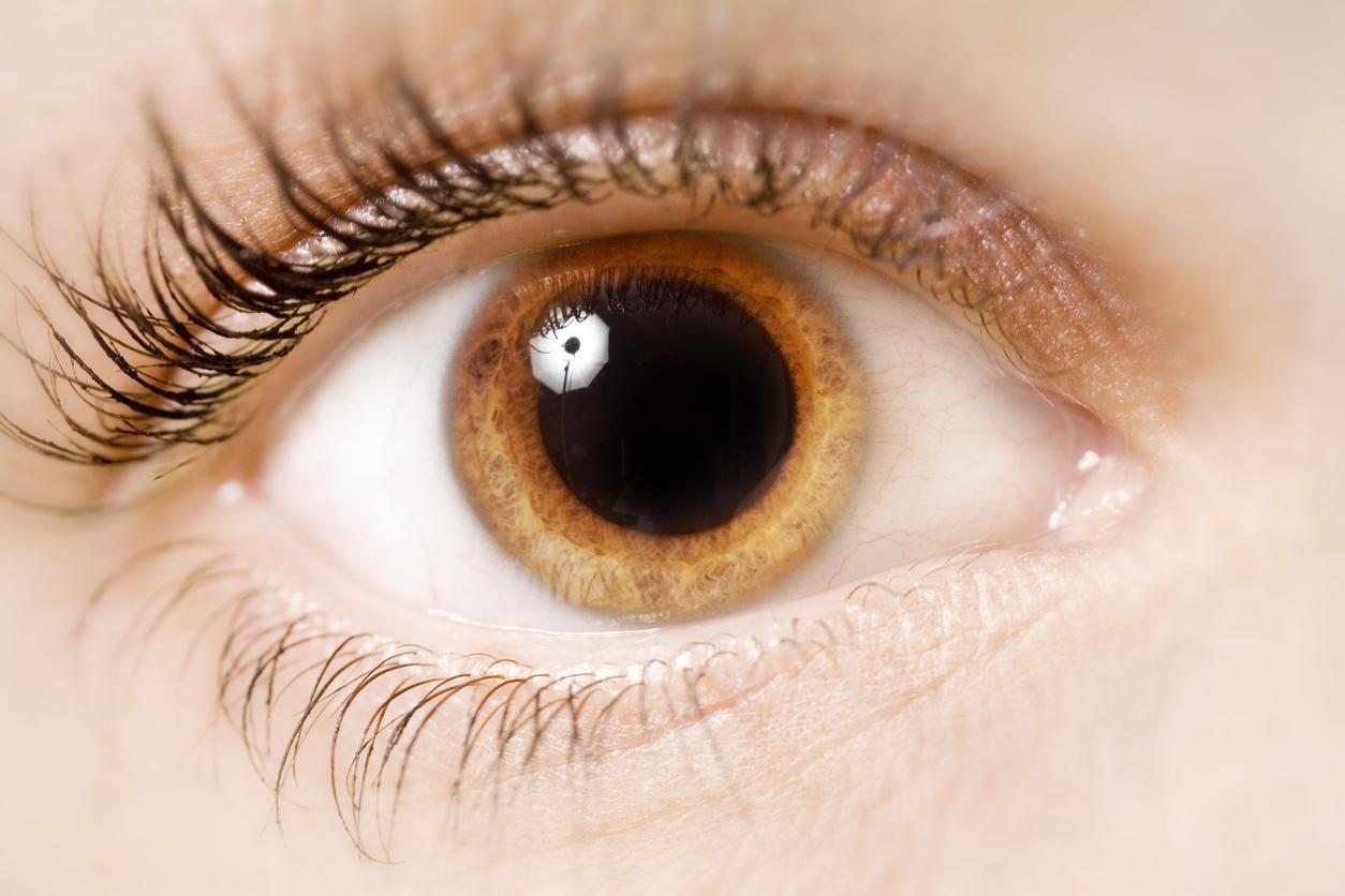 Ano Dilatado por qué se dilantan las pupilas? | blog de clínica baviera