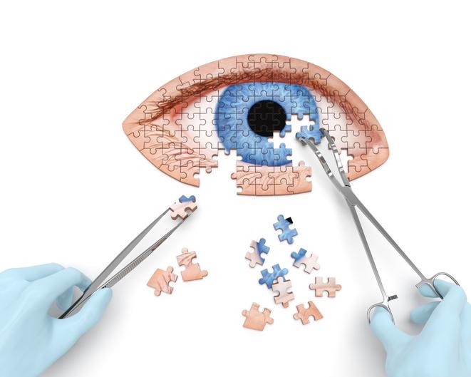 Puzzle de un ojo por piezas