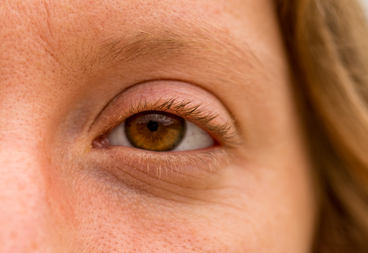 Ojo marrón con cejas y pestañas rubias