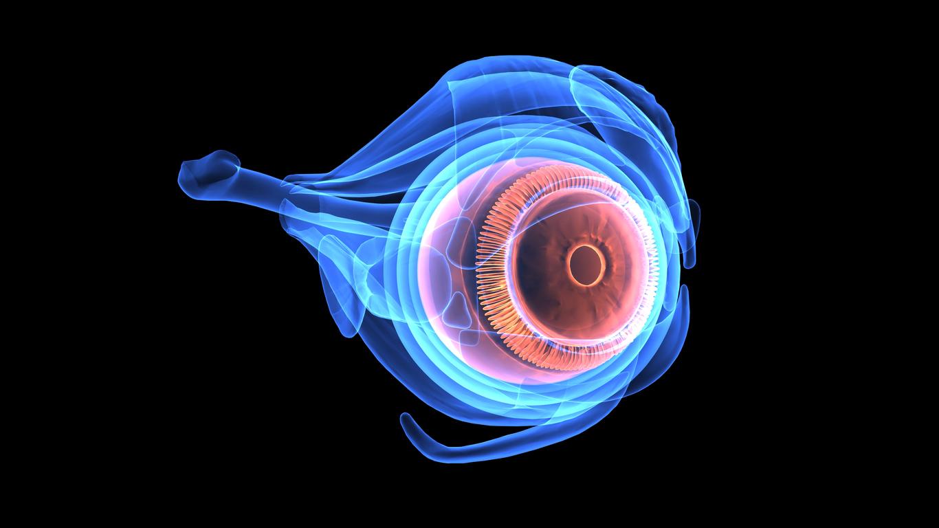 Diagrama de las partes del ojo por capas