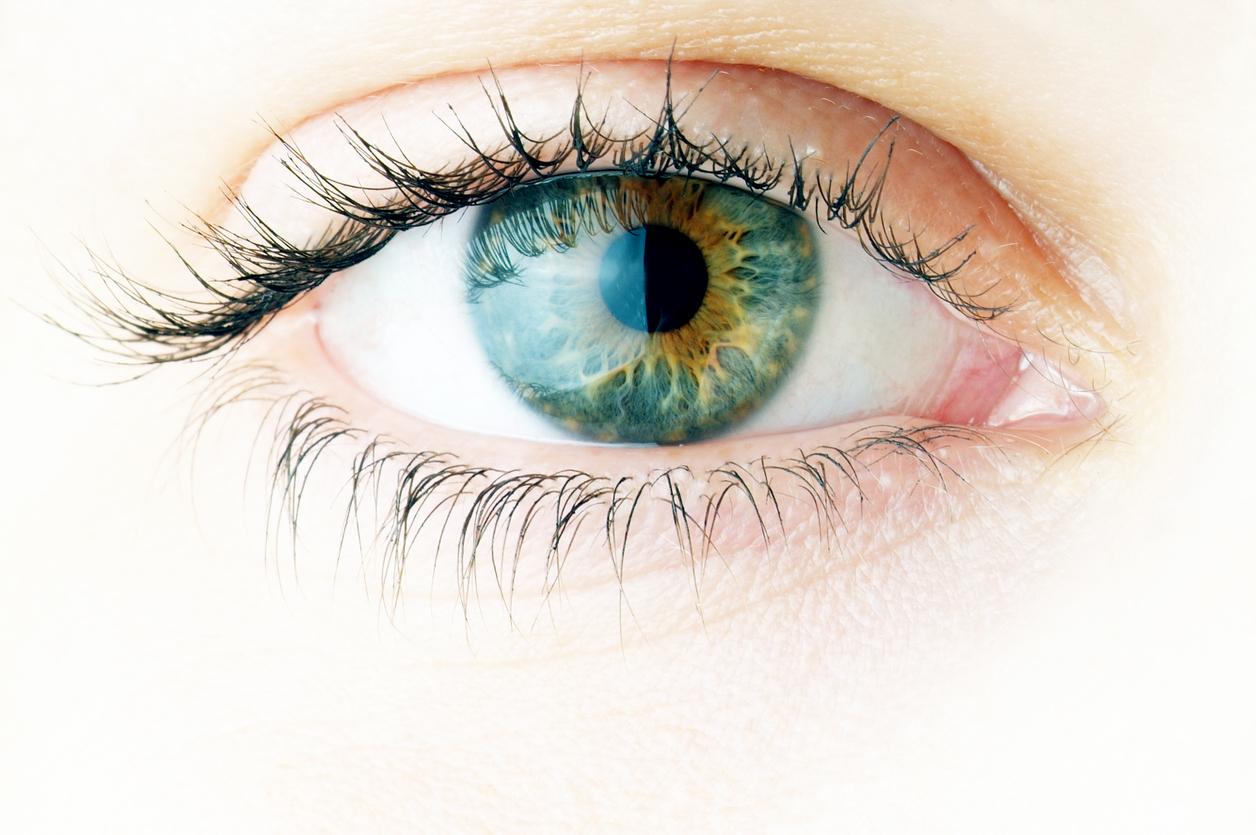 Ojo verde con reflejos amarillos de frente