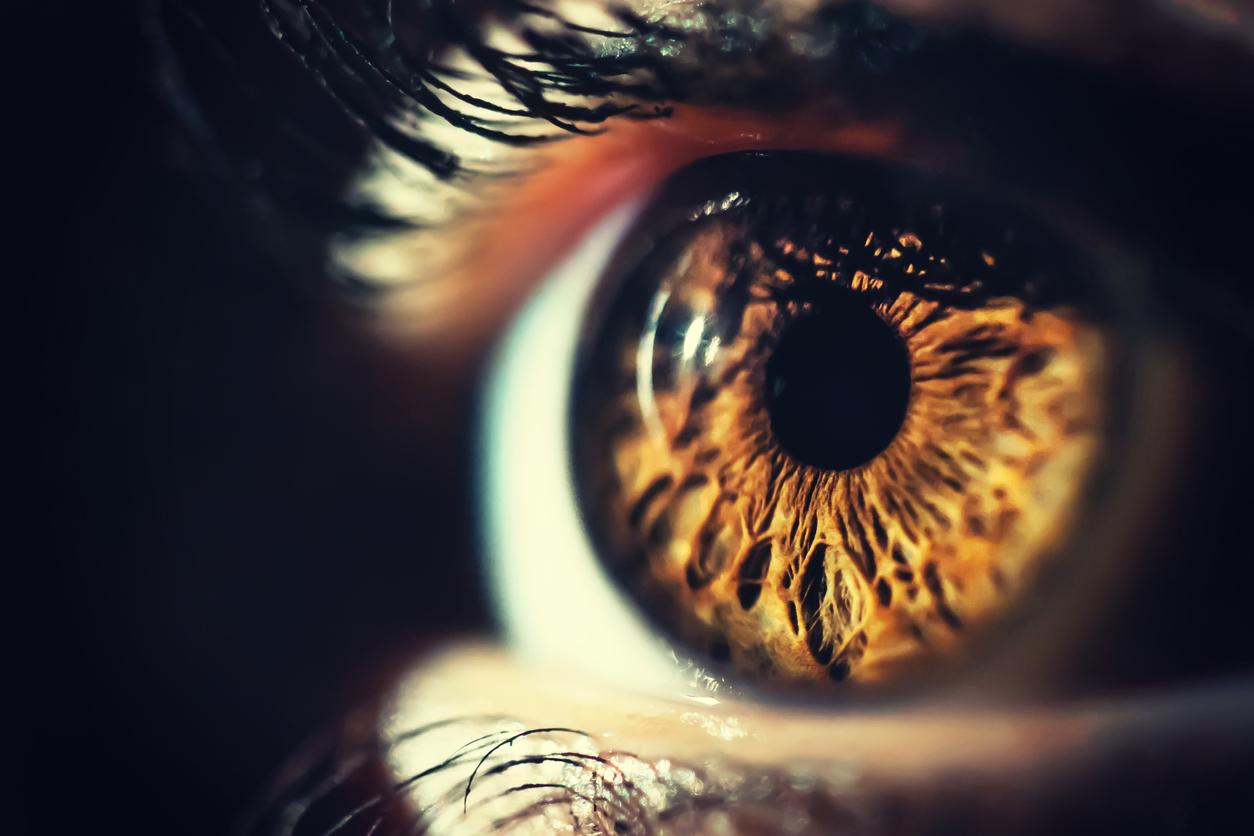 Primer plano de ojo marrón