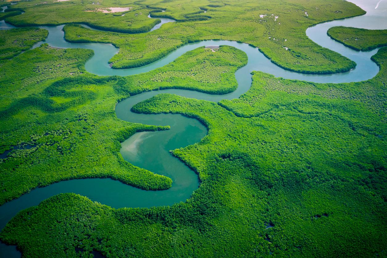 Meandro de un río